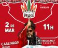 Brown estreia no carnaval de rua de São Paulo